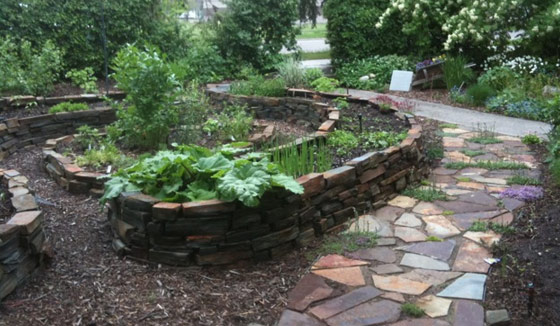 French Knot Garden in Elbow Park
